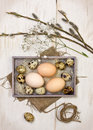 Easter decoration with chicken and quail eggs willow branch on a wooden background Stock Photos