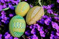 Easter decoration eggs slovak national fine art typical spring habits goose and hen hand made decorated with cotton yarn green Royalty Free Stock Image