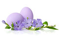 Easter decoration with eggs violet Stock Images