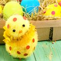 Easter decoration with little cute chick and Easter eggs in the Royalty Free Stock Photo
