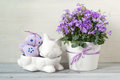 Easter decorations with rabbit full of easter eggs and a pot of spring flowers on a white wooden background Royalty Free Stock Photo
