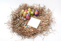 Easter decorative chocolate eggs in the nest with empty note pap paper Stock Photos