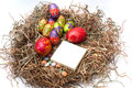 Easter decorative chocolate eggs in the nest with empty note pap paper Stock Photography