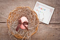 Easter egg and card decorated with ribbon on wooden background Royalty Free Stock Photo