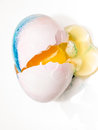 Easter egg coloring detail close up Royalty Free Stock Photo