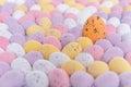 Pasqua uovo folla