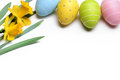Easter egg and daffodil flower on white closeup Royalty Free Stock Images