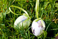 Easter egg decoration outdoor in spring green gras Royalty Free Stock Photography