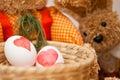 Easter Egg Dyeing Stock Photos