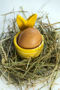 Easter egg in egg cup yellow with rabbit ears hay and white background Royalty Free Stock Photo