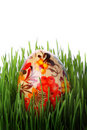 Easter egg in grass Royalty Free Stock Photo