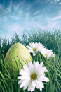 Easter egg on in grass with bright spring sky Royalty Free Stock Images