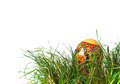 Easter egg in grass hidden the green Royalty Free Stock Images
