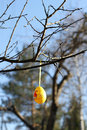 Easter egg hanging on a tree branch outside Royalty Free Stock Image