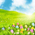 Easter egg meadow Stock Photography
