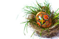 Easter egg in nest grass hidden the green Royalty Free Stock Photo