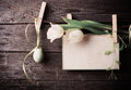 Easter egg and paper attach to rope with clothes pins tulips Royalty Free Stock Photography