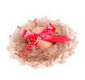 Easter egg with a red ribbon in the straw hat Stock Image