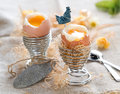 Easter egg soft boiled with decoration selective focus Royalty Free Stock Photos