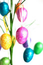 Easter Egg Tree Royalty Free Stock Photo