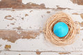 Easter egg turqoise colored on wooden background Stock Photo