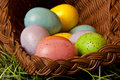 Easter eggs assorted colored in wicker basket on green grass Royalty Free Stock Photos