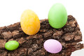 Easter Eggs On Bark Stock Photos