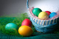 Easter eggs in the basket dark background Stock Images