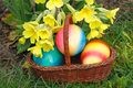 Easter eggs in a basket with flowers in a meadow Stock Image