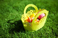 Easter eggs with basket on the grass Stock Photos
