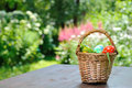 Easter eggs basket with painted standing on garden table Stock Images