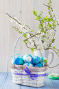 Easter eggs basket spring branches in a and Royalty Free Stock Images