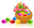 Easter eggs in basket with tulip flowers Royalty Free Stock Images
