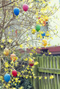 Easter eggs on blooming tree Stock Photo