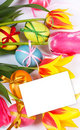 Easter eggs with bows and tulips Royalty Free Stock Photo