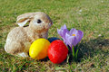 Easter eggs and bunny rabbit Royalty Free Stock Photos