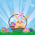 Easter Eggs Bunny Rabbit in Basket Stock Photos