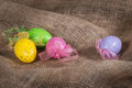 Easter eggs on burlap Royalty Free Stock Photo