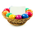 Easter eggs in busket on green gras isolated concept holyday postcard creative Royalty Free Stock Photo