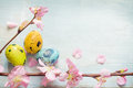 Easter eggs and cherry blossom retro blue background Royalty Free Stock Photo