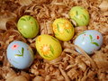 Easter eggs colored on wood shavings Royalty Free Stock Photography