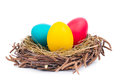 Easter eggs colorful in nest isolated on white Stock Photos