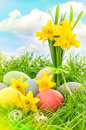 Easter eggs and daffodils flowers. Blue sky with light leaks Royalty Free Stock Photo