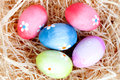 Easter eggs decorated with daisies on a nest of straw and wooden background Royalty Free Stock Photo