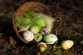 Easter eggs decoration in green grass outdoor in spring