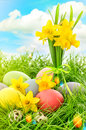 Easter eggs decoration and narcissus flowers. Blue sky with lens Royalty Free Stock Photo