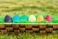 Easter eggs diffrent color in a basket on a grass Royalty Free Stock Photo