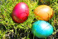 Easter eggs ester photo with Stock Photos