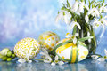 Easter eggs and flower in blue background Royalty Free Stock Image