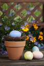 Easter eggs flower pot a blue speckled egg in nest resting in terra cotta with additional beside blue daisies marigolds and Stock Photo